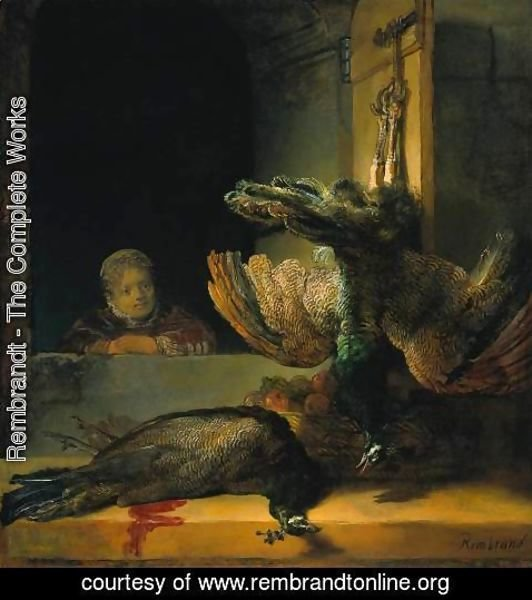 Rembrandt - Dead peacocks
