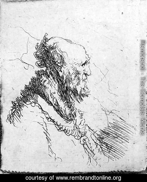 A bald old Man with a short Beard, in Profile Right