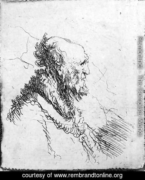 Rembrandt - A bald old Man with a short Beard, in Profile Right