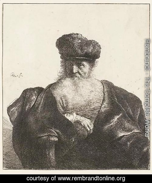 An old Man with Beard, Fur Cap, and Velvet Coat