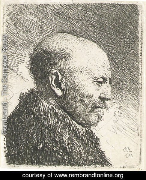Rembrandt - Bald-headed man in Profile Right; The Artist's Father