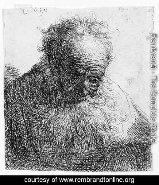 Rembrandt - Bust of an old Man with a flowing Beard The Head bowed forward