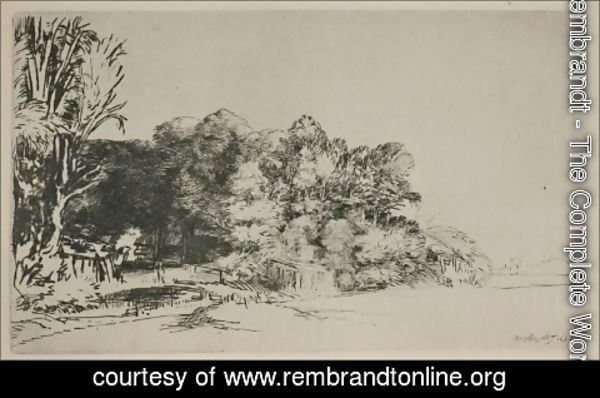 Rembrandt - Clump of Trees with a Vista
