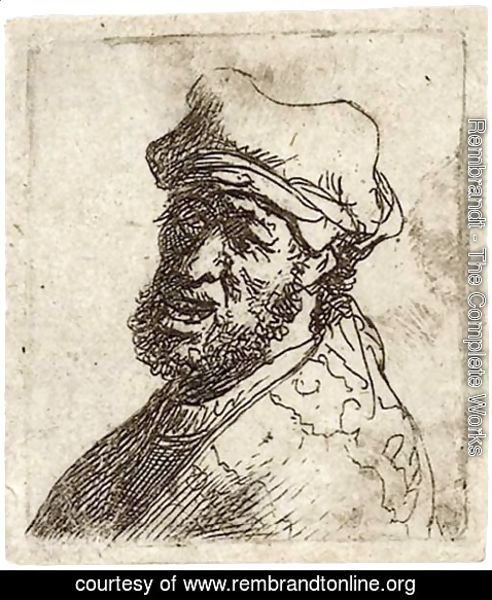 Rembrandt - Man crying out, three-quarters left Bust