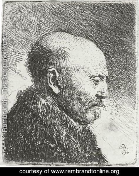 Bald Headed Man In Profile Right The Artist's Father