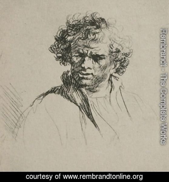 Rembrandt - A Man with Curly Hair
