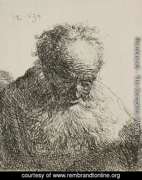 Rembrandt - An Old Man with a Large Beard