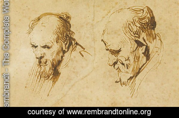 Rembrandt - Two Studies of the Head of an Old Man