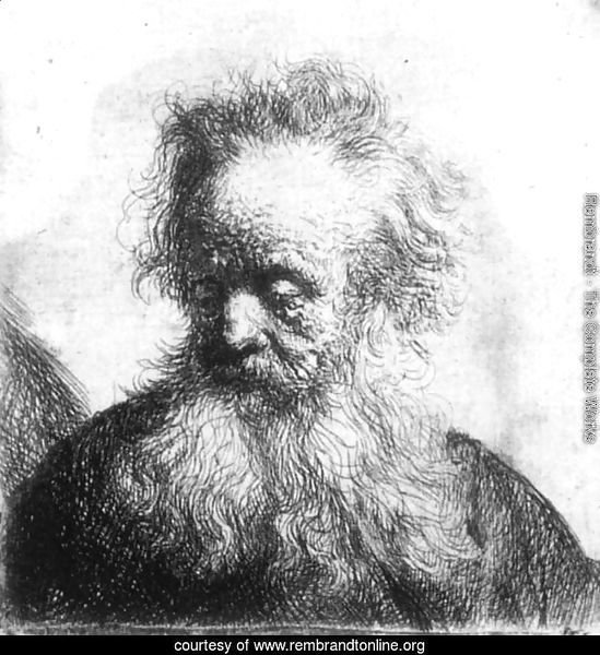 Old Man With Flowing Beard Looking Down Left 1631