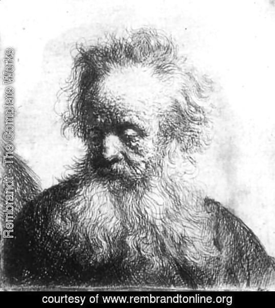 Rembrandt - Old Man With Flowing Beard Looking Down Left 1631
